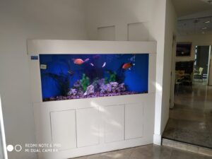 אקווריום לבן בעיצוב מודרני 4 300x225 - גלריה!