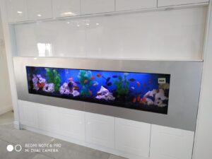 אקווריום לבן בעיצוב מודרני 6 300x225 - גלריה!